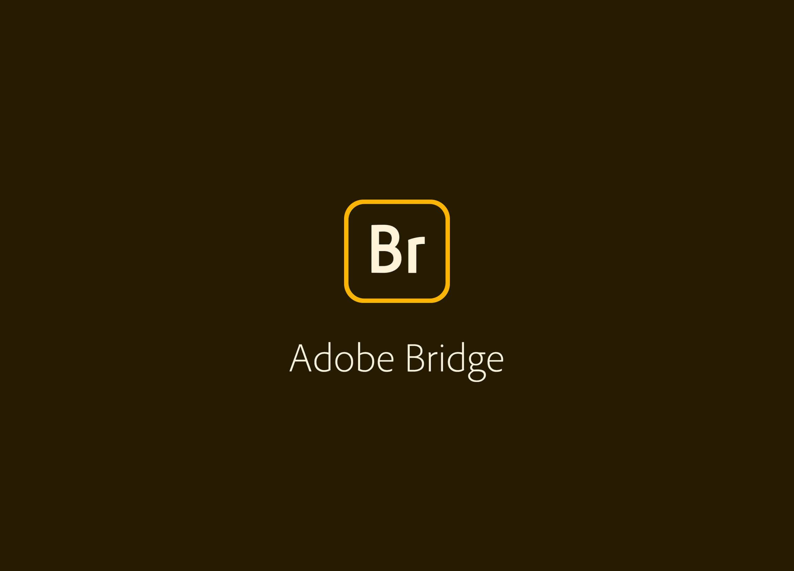 Adobe Bridge 2020 SP插图
